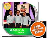 aneka_icon